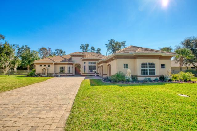 8 Old Mcduffie Circle, Ormond Beach, FL 32174 (MLS #1053762) :: Cook Group Luxury Real Estate