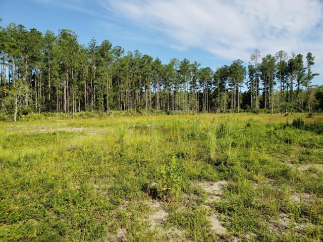 105 Creekside Drive, Bunnell, FL 32110 (MLS #1053778) :: Memory Hopkins Real Estate