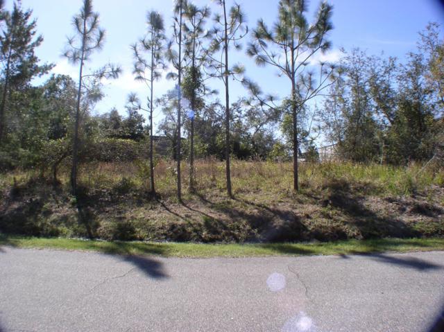 2621 Slow Flight Drive, Port Orange, FL 32128 (MLS #1053895) :: Beechler Realty Group