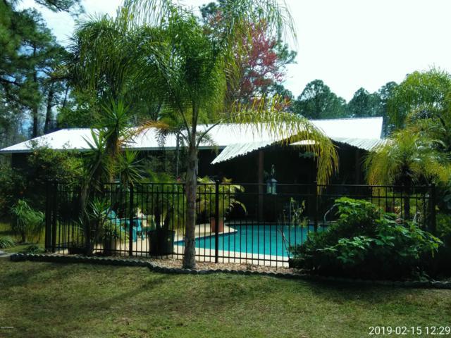 3131 Citrus Drive, Edgewater, FL 32141 (MLS #1053980) :: Beechler Realty Group