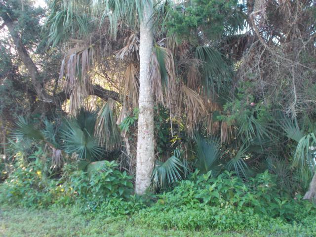 811 Locust Street, New Smyrna Beach, FL 32169 (MLS #1054000) :: Beechler Realty Group