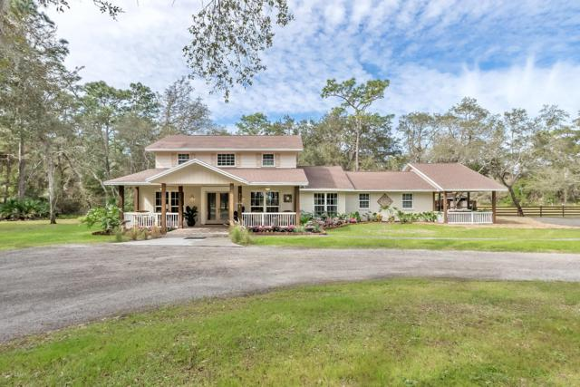 430 Pine Bluff Trail, Ormond Beach, FL 32174 (MLS #1054006) :: Cook Group Luxury Real Estate