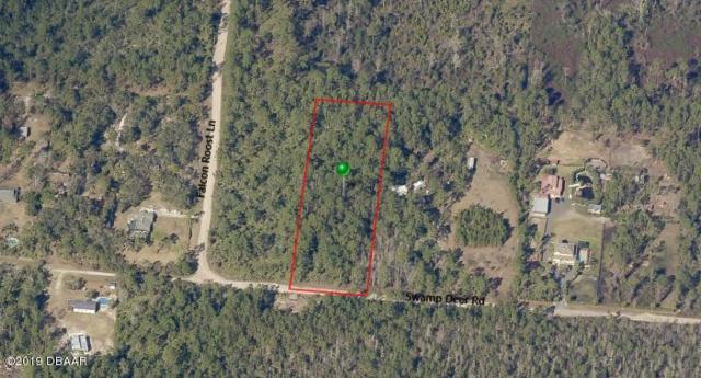 4155 Swamp Deer Road, New Smyrna Beach, FL 32168 (MLS #1054335) :: Cook Group Luxury Real Estate