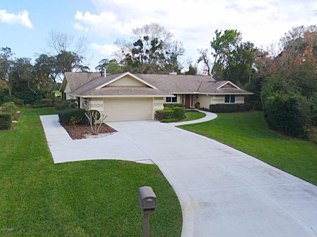 910 Arrowroot Court, New Smyrna Beach, FL 32168 (MLS #1054459) :: Cook Group Luxury Real Estate