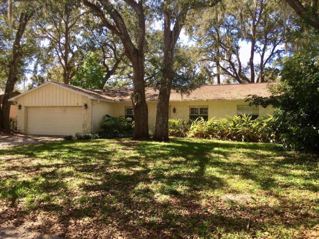 284 Brandy Hills Drive, Port Orange, FL 32129 (MLS #1054535) :: Cook Group Luxury Real Estate