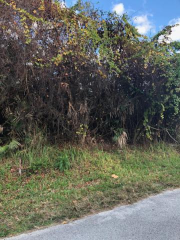 0 Engram Road, New Smyrna Beach, FL 32169 (MLS #1055093) :: Memory Hopkins Real Estate