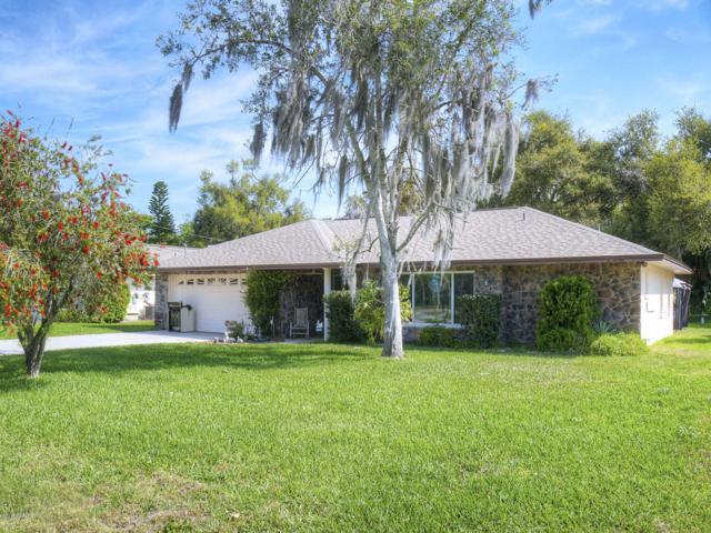 709 Green Road, New Smyrna Beach, FL 32168 (MLS #1055249) :: Memory Hopkins Real Estate