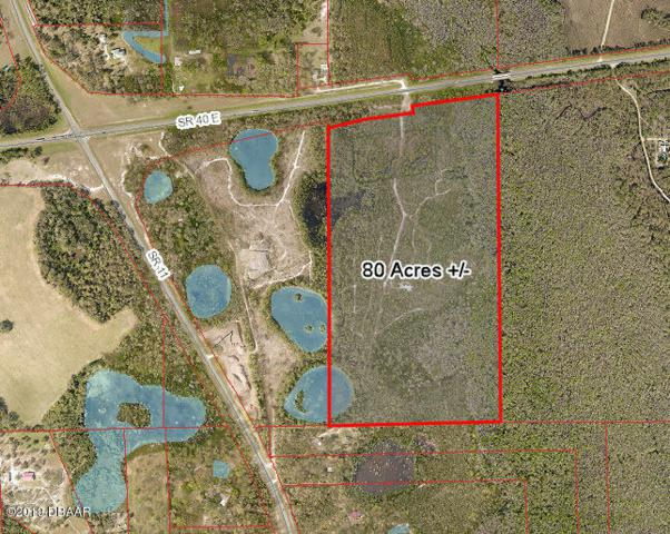 2155 E State Rd 40 Road, Deleon Springs, FL 32130 (MLS #1055343) :: Cook Group Luxury Real Estate
