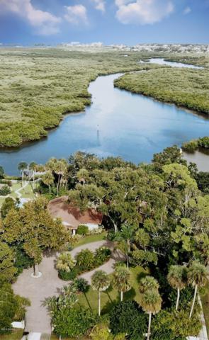 101 Wayne Avenue, New Smyrna Beach, FL 32168 (MLS #1055745) :: Cook Group Luxury Real Estate