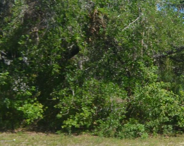 245 Palm Place, Ormond Beach, FL 32174 (MLS #1056601) :: Memory Hopkins Real Estate