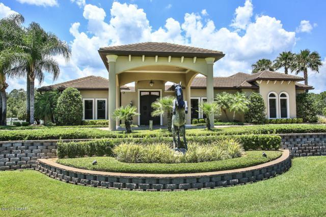 330 Spring Forest Drive, New Smyrna Beach, FL 32168 (MLS #1057792) :: Memory Hopkins Real Estate