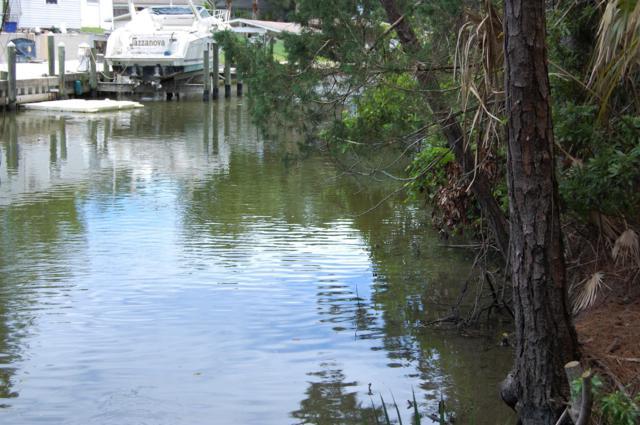 0 Hazelwood River Road, Edgewater, FL 32141 (MLS #1058897) :: Memory Hopkins Real Estate