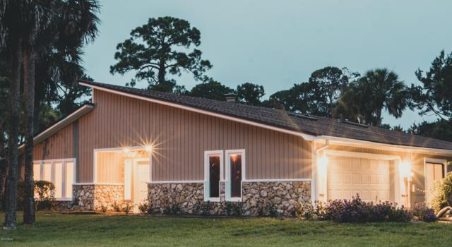 448 Pelican Bay Drive, Daytona Beach, FL 32119 (MLS #1060128) :: Cook Group Luxury Real Estate