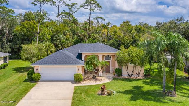 438 Nash Lane, Port Orange, FL 32127 (MLS #1062391) :: Memory Hopkins Real Estate