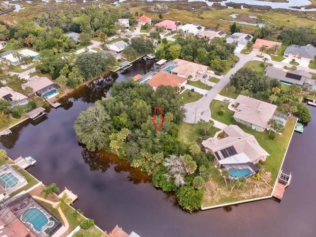 10 Chesapea Court, Palm Coast, FL 32137 (MLS #1064309) :: Florida Life Real Estate Group