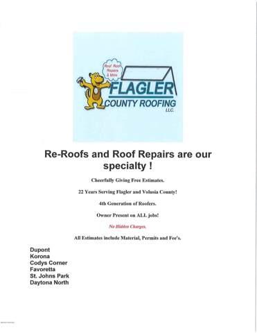 406 Chicken Farm Road, Bunnell, FL 32110 (MLS #1065374) :: Memory Hopkins Real Estate