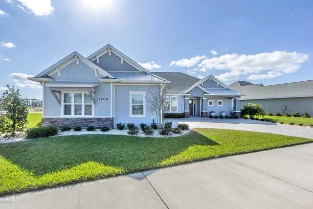 3200 Medici Boulevard, New Smyrna Beach, FL 32168 (MLS #1066889) :: Florida Life Real Estate Group
