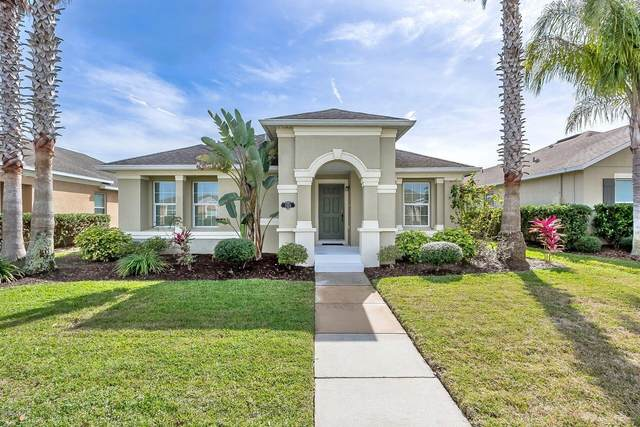3324 Pintello Avenue, New Smyrna Beach, FL 32168 (MLS #1067471) :: Memory Hopkins Real Estate