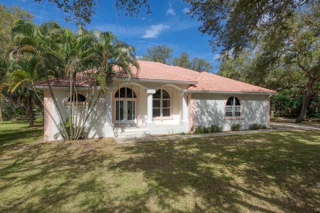 146 Bounty Lane, Ponce Inlet, FL 32127 (MLS #1067951) :: Florida Life Real Estate Group
