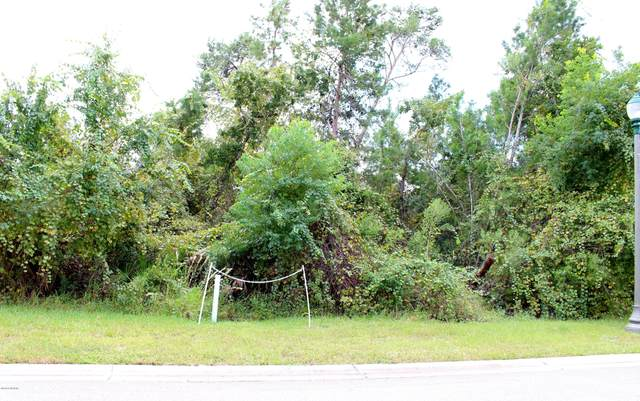 54 Apian Way, Ormond Beach, FL 32174 (MLS #1068830) :: Memory Hopkins Real Estate