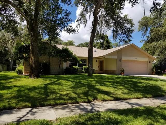 728 Prospect Point Drive, Port Orange, FL 32127 (MLS #1069655) :: Cook Group Luxury Real Estate