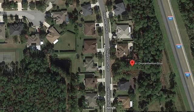 61 Chrysanthemum Drive, Ormond Beach, FL 32174 (MLS #1071233) :: Florida Life Real Estate Group