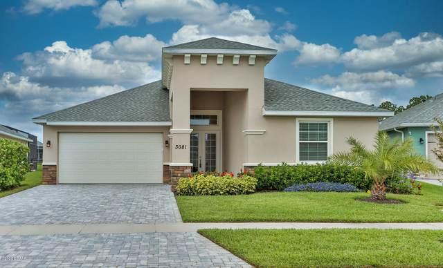 3081 Borassus Drive, New Smyrna Beach, FL 32168 (MLS #1071506) :: Florida Life Real Estate Group