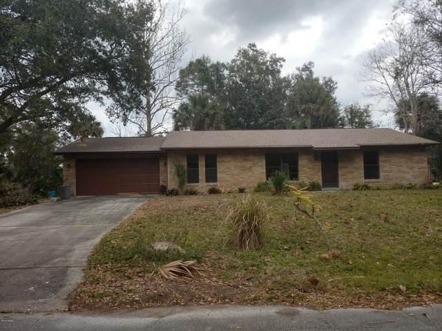 3317 Mango Tree Drive, Edgewater, FL 32141 (MLS #1071541) :: Florida Life Real Estate Group