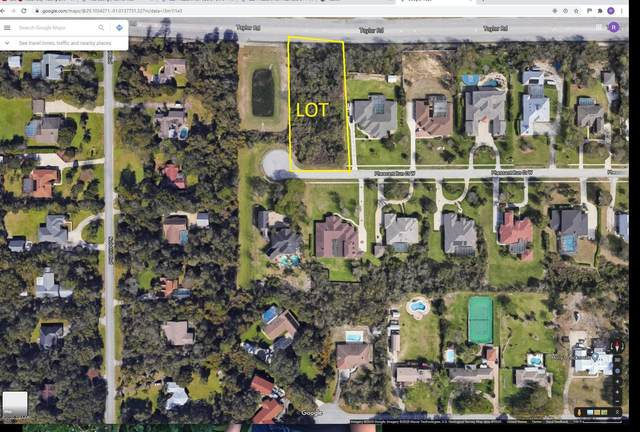 825 W Pheasant Run Court, Port Orange, FL 32127 (MLS #1072123) :: NextHome At The Beach