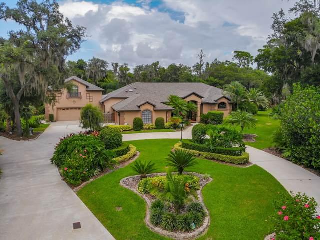 6241 Palomino Circle, Port Orange, FL 32127 (MLS #1073575) :: Cook Group Luxury Real Estate