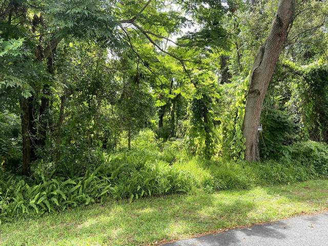 56 Lazy Eight Drive, Port Orange, FL 32128 (MLS #1073607) :: Memory Hopkins Real Estate