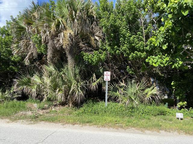 6866 S Atlantic Avenue, New Smyrna Beach, FL 32169 (MLS #1073878) :: Cook Group Luxury Real Estate