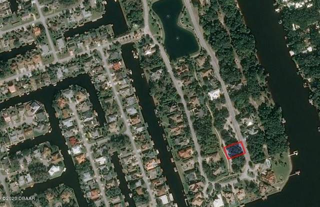 29 S Old Oak Drive, Palm Coast, FL 32137 (MLS #1074363) :: Memory Hopkins Real Estate