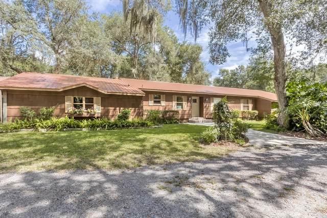 711 Freda Lane, Port Orange, FL 32127 (MLS #1075345) :: Cook Group Luxury Real Estate