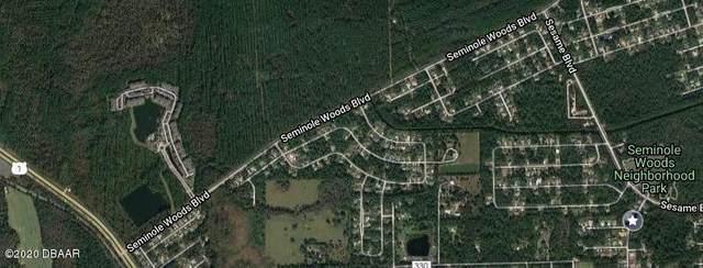 11 Sleepy Hollow Trail, Palm Coast, FL 32164 (MLS #1075440) :: Florida Life Real Estate Group