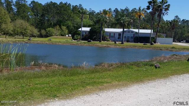 9035 State Road 11, Bunnell, FL 32110 (MLS #1075652) :: Memory Hopkins Real Estate