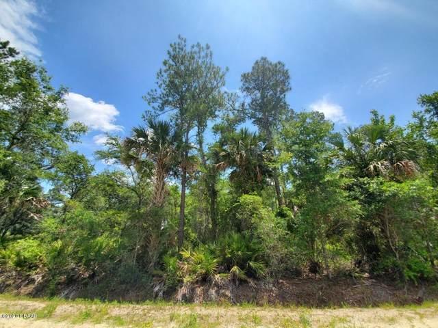2885 Water Oak Rd, Bunnell, FL 32110 (MLS #1075747) :: Memory Hopkins Real Estate