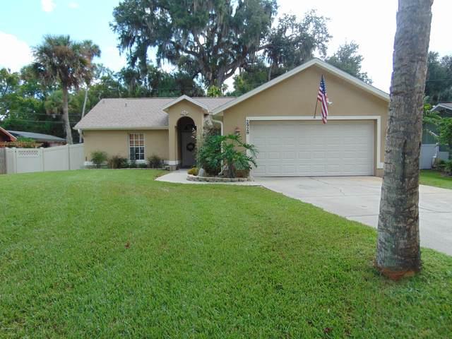 2929 Needle Palm Drive, Edgewater, FL 32141 (MLS #1075772) :: Florida Life Real Estate Group
