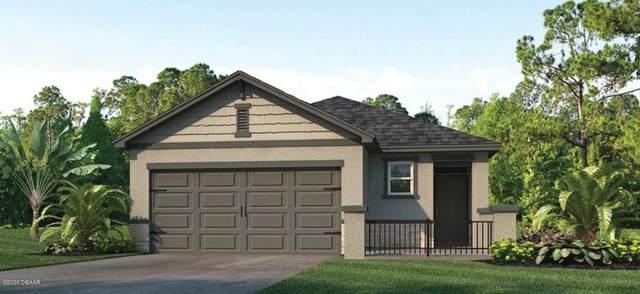 3106 Borassus Drive, New Smyrna Beach, FL 32168 (MLS #1075852) :: Cook Group Luxury Real Estate