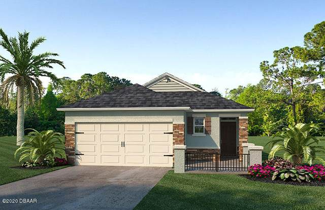 250 Caryota Court, New Smyrna Beach, FL 32168 (MLS #1075853) :: Cook Group Luxury Real Estate