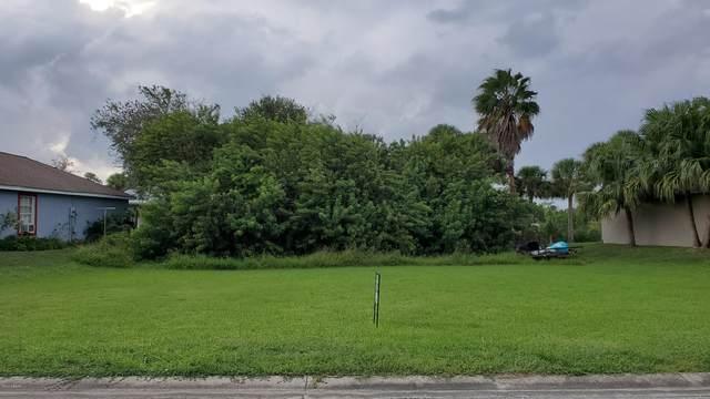 508 Terrier Way, New Smyrna Beach, FL 32168 (MLS #1076812) :: Cook Group Luxury Real Estate