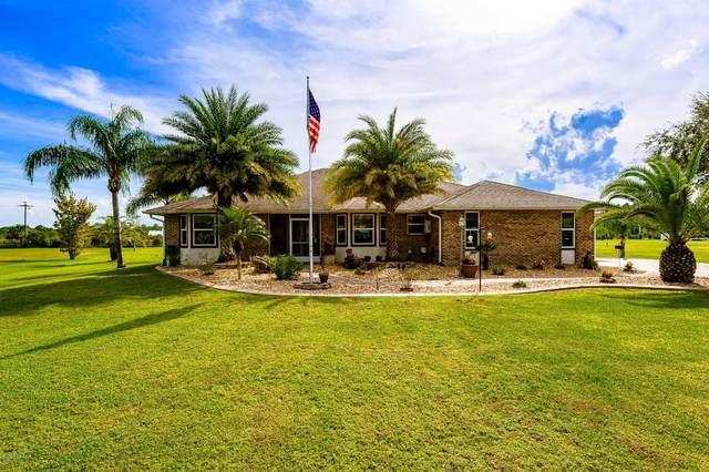 245 Quiet Trail Drive, Port Orange, FL 32128 (MLS #1076986) :: Cook Group Luxury Real Estate
