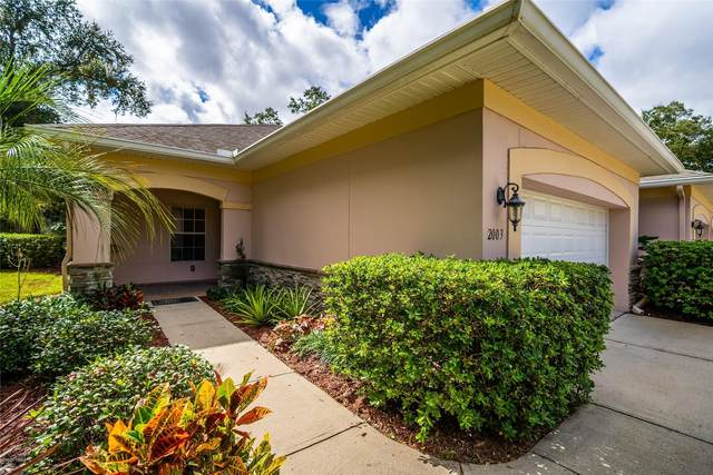 2003 Turnbull Lakes Drive, New Smyrna Beach, FL 32168 (MLS #1077270) :: Memory Hopkins Real Estate