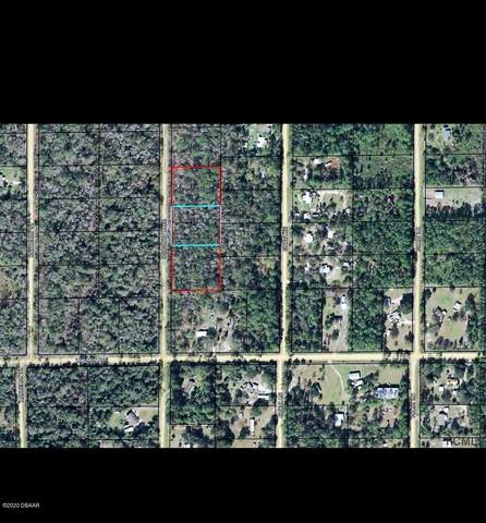 1817 Coconut Boulevard, Bunnell, FL 32110 (MLS #1078100) :: Florida Life Real Estate Group