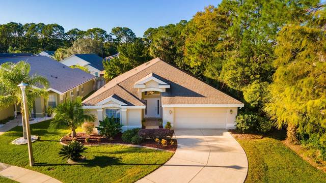 17 Whistling Duck Court, Daytona Beach, FL 32119 (MLS #1078141) :: Team Zimmerman