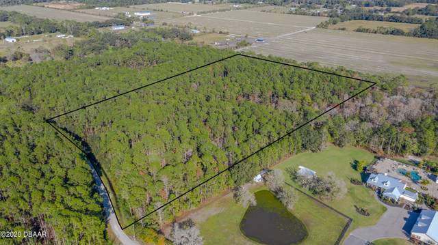 455 Spring Forest Drive, New Smyrna Beach, FL 32168 (MLS #1078812) :: Momentum Realty
