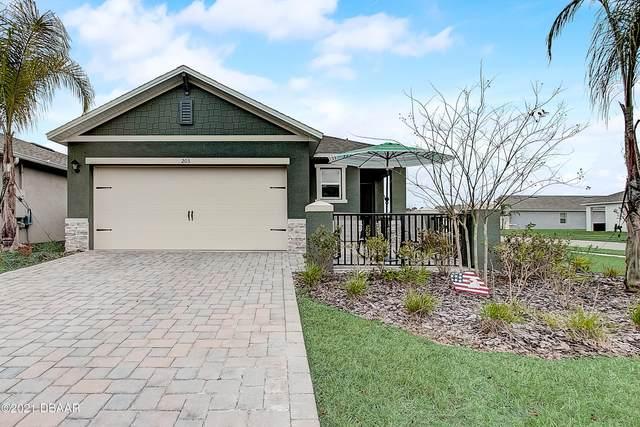 203 Caryota Court, New Smyrna Beach, FL 32168 (MLS #1079495) :: NextHome At The Beach