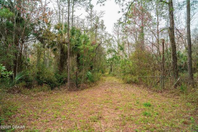 2349 Durrance Lane, Ormond Beach, FL 32174 (MLS #1080579) :: Florida Life Real Estate Group