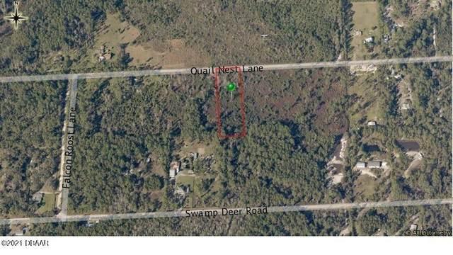 4138 Quail Nest Lane, New Smyrna Beach, FL 32168 (MLS #1080655) :: NextHome At The Beach