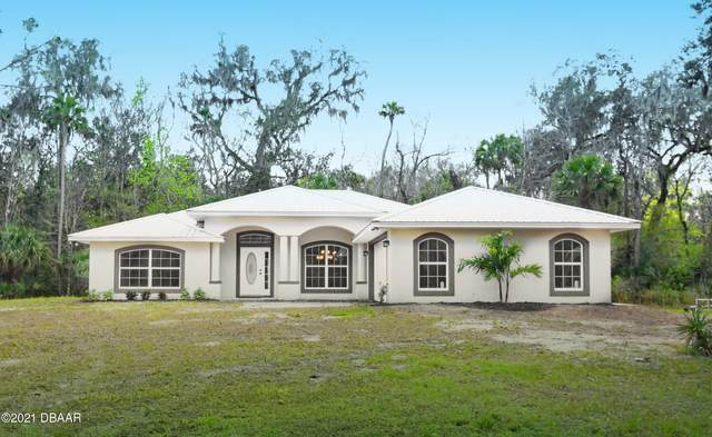 2900 Tangelo Road, Edgewater, FL 32141 (MLS #1081045) :: NextHome At The Beach